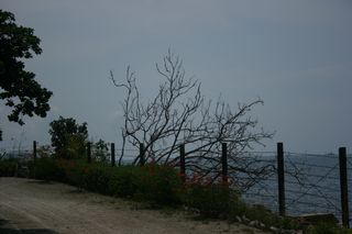 LombokBangka 278